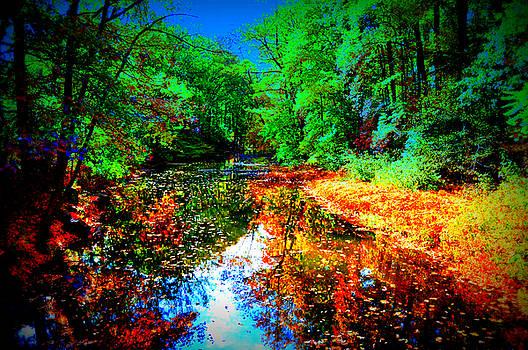 Autumn Colors 2015 by Aron Chervin