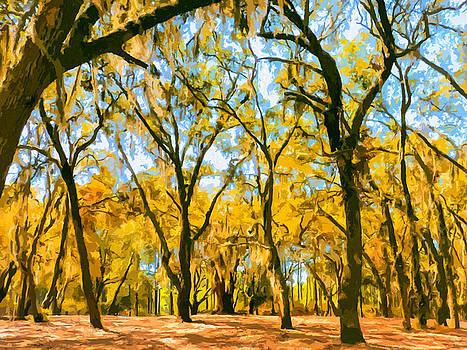 Dominic Piperata - Autumn Colors
