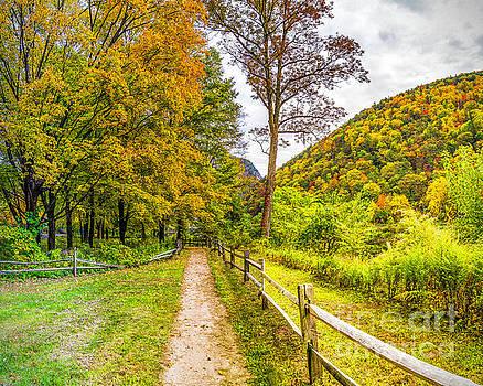 Nick Zelinsky - Autumn Colors in the Gap