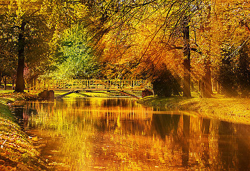 Autumn colors by Ivan Vukelic