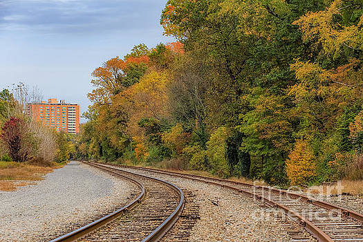 Autumn Colors On The Side by Ava Reaves
