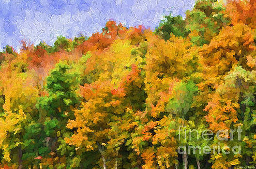 Autumn Country on a Hillside II - Digital Paint by Debbie Portwood