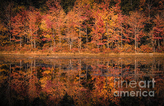 Autumn by David Rucker