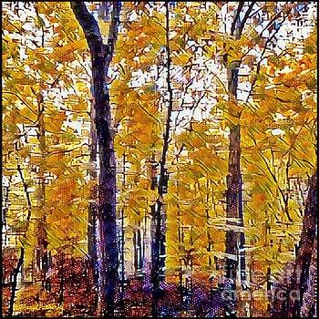 Autumn  Day In The woods by MaryLee Parker