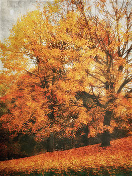 Angela Doelling AD DESIGN Photo and PhotoArt - Autumn Dream