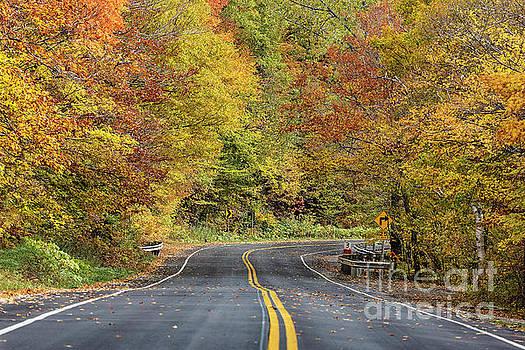 Autumn Drive by John Greim