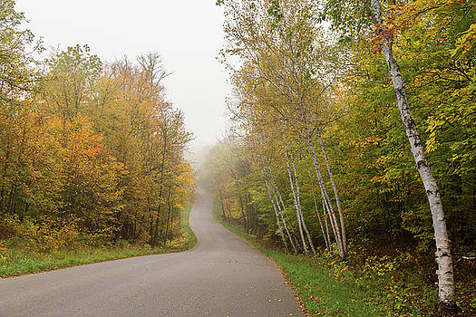 Autumn Drive by Penny Meyers