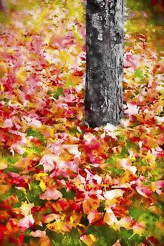 Steve Ohlsen - Autumn - Fallen Colors 2