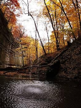 Autumn Falls III by Anna Villarreal Garbis