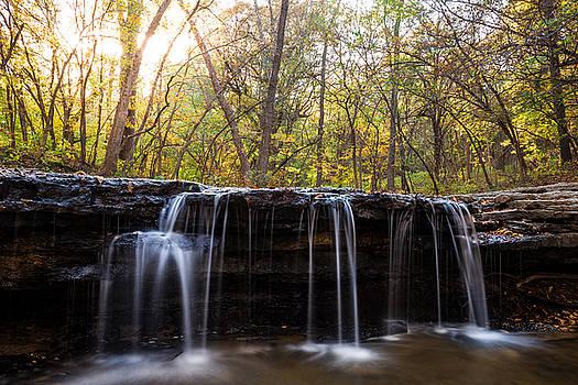 Autumn Falls by Joseph Mills