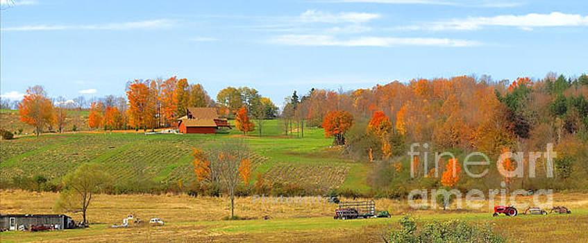 Autumn Farm by Raymond Earley
