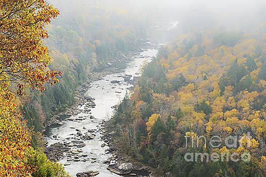Autumn Fog Gauley River by Thomas R Fletcher