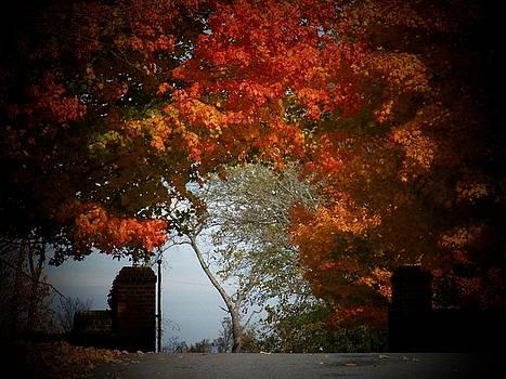 Autumn Gate by Joyce Kimble Smith