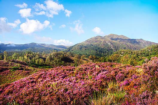 Jenny Rainbow - Autumn Glory in Trossachs. Scotland