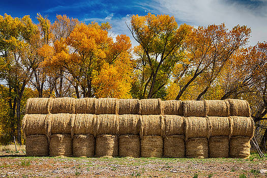 Autumn Hay Bales by James BO  Insogna