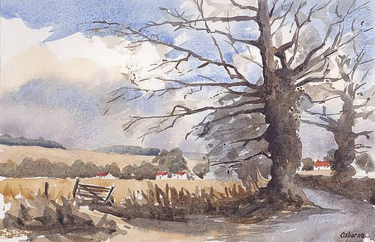 Autumn by Ian Osborne