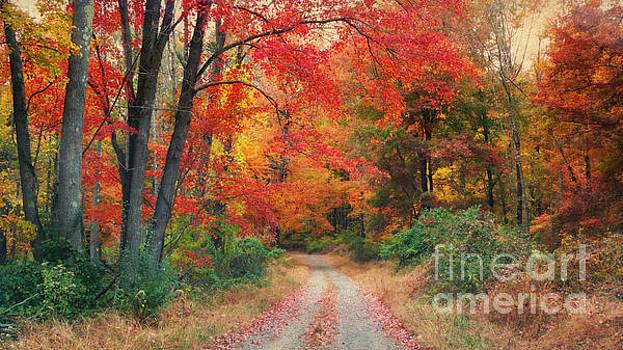 Autumn In New Jersey by Beth Ferris Sale