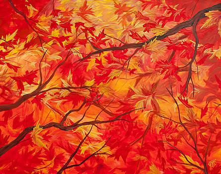 Autumn by Jessica Tookey