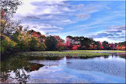Autumn Landscape 3 by Mikki Cucuzzo