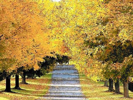 Autumn Lane by Joyce Kimble Smith
