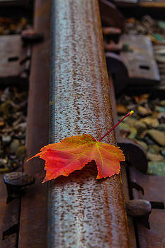 Autumn Leaf On Railroad Tracks by Garry Gay