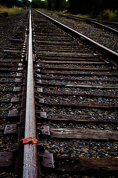 Autumn leaf On Rails by Garry Gay