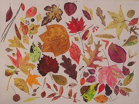 Autumn Leaves by Diane Frick