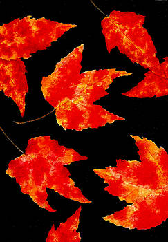 Autumn Leaves Number Two by Michael Vigliotti