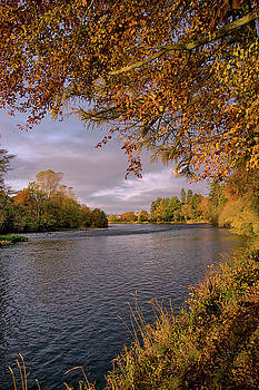 Autumn Light by the River Ness by Jacqi Elmslie