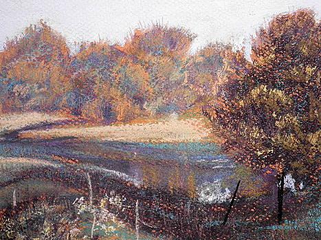 Autumn Meadows by Curt Peifley