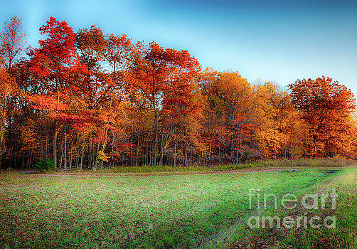 Dan Carmichael - Autumn Morning in the Blue Ridge