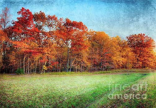 Dan Carmichael - Autumn Morning in the Blue Ridge FX