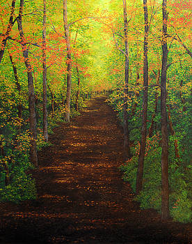 Autumn Path by Jessica Tookey