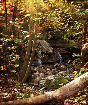 Autumn Peak by Lj Lambert