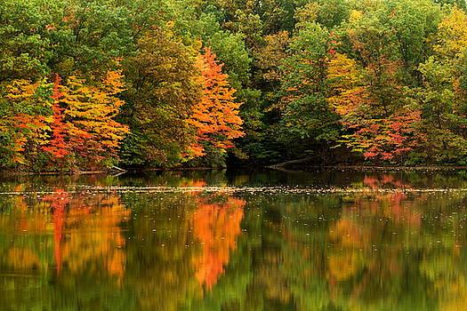 Autumn Reflected in Lake by Amanda Kiplinger