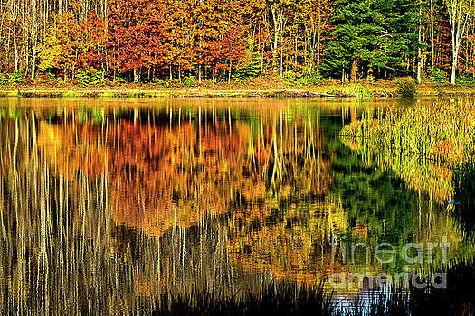 Autumn Reflection on Lake by Thomas R Fletcher