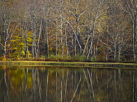 Autumn Reflections by Andrew Kazmierski