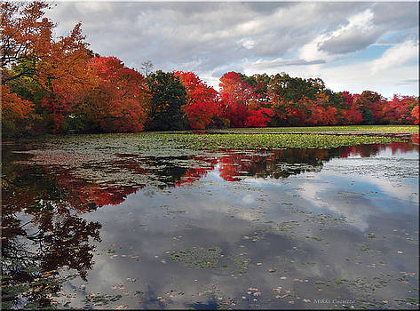 Autumn Reflections by Mikki Cucuzzo