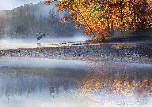 Autumn River Fog With Heron by R christopher Vest