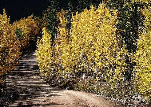 Autumn Road by Jim Hill
