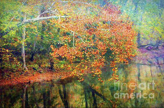 Autumn Scenery  by Kerri Farley - New River Nature