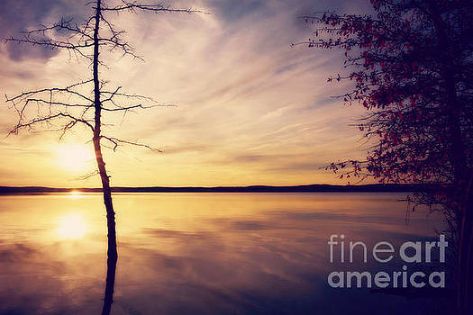 Autumn Serenity by Kelly Nowak