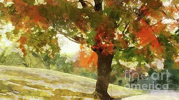 Autumn Shade by Putterhug Studio
