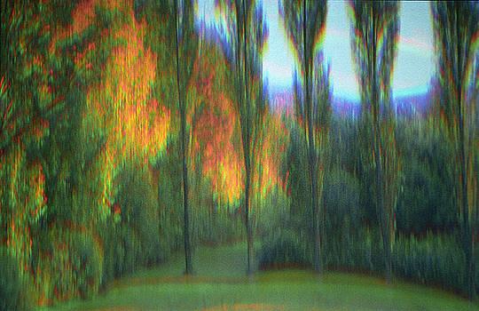 Autumn Sonata by Ron Morecraft