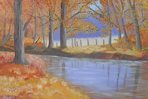 Autumn Stream by Dorothy Merritt