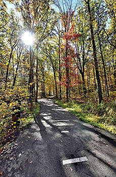 Autumn Sun in Ohiopyle State Park by Brendan Reals
