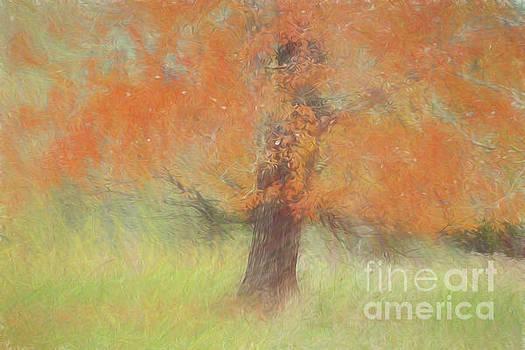 Autumn Tree # 1 by Geraldine DeBoer
