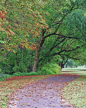 Autumn Trees At Bisset Park by Kerri Farley