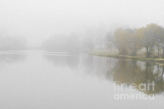 Autumn Trees Fading Into Fog by Tamara Becker