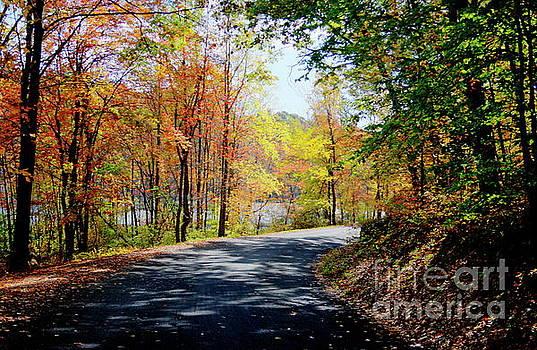 Autumn Turn by Marcel  J Goetz  Sr